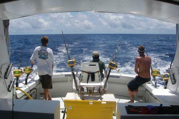 shikari fishing charters