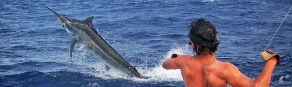 Big game marlin fishing