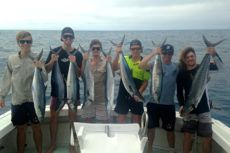 sportfishing cairns