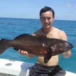 spearfishing cairns