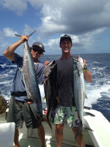 marlin fishing cairns